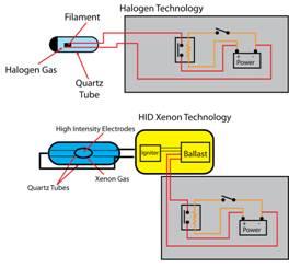 xenon versus halogen
